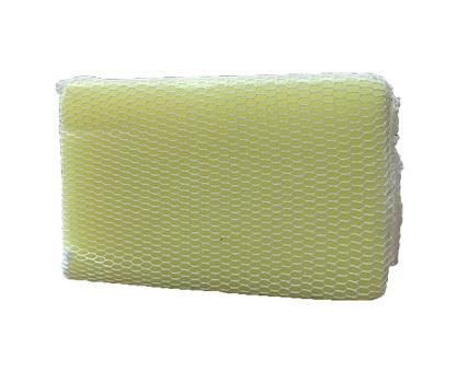 White Netted Bug Sponge Image